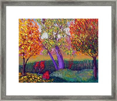 Fall Colors Framed Print by Stan Hamilton