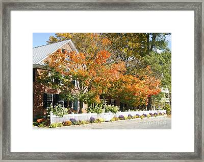Fall Colour In Grafton Framed Print by David Birchall