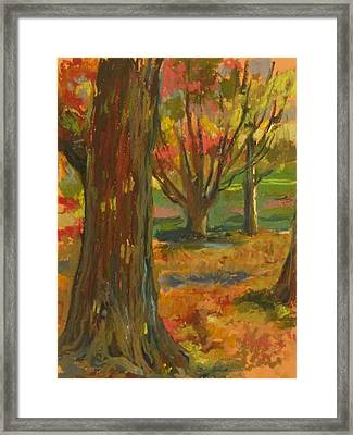 Fall Comes To Prospect Park Framed Print by Linda Berkowitz