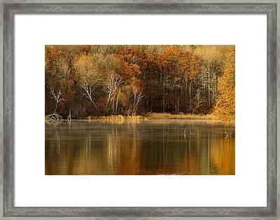 Fall Cove Framed Print