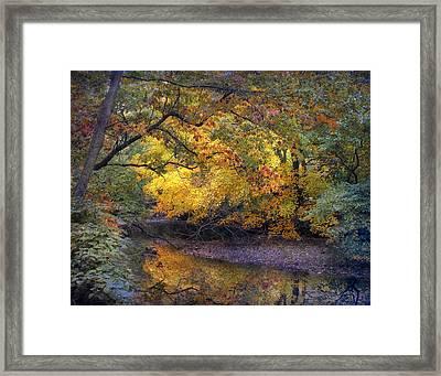 Fall Creek Framed Print by Jessica Jenney