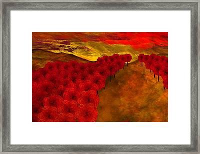 Fall Creek Framed Print by Wally Boggus