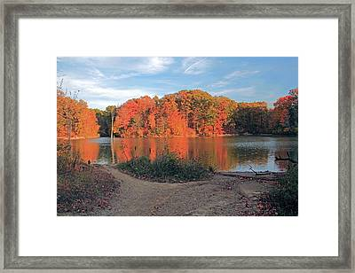 Fall Day At The Creek Framed Print