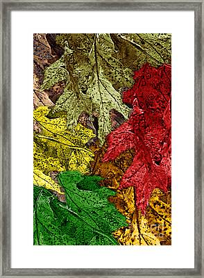 Fall Down Framed Print