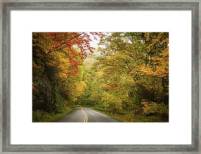 Fall Drive On The Blue Ridge Parkway Framed Print by Terry DeLuco