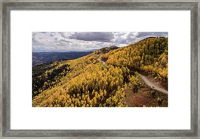 Fall Drive Framed Print