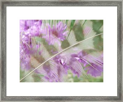 Fall Feather Framed Print