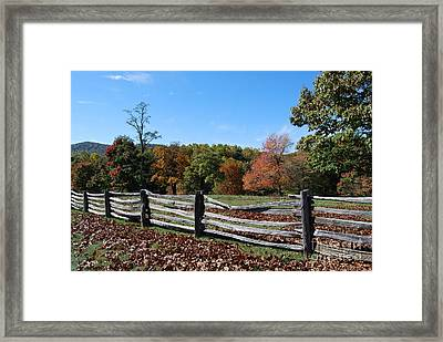 Fall Fence Framed Print by Eric Liller