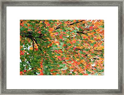 Fall Festivities Framed Print