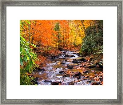 Fall Fire Framed Print by Randy Steele