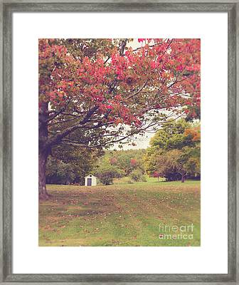 Fall Foliage And Old New England Shed Framed Print
