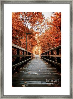 Framed Print featuring the photograph Fall Foliage In The Heart Of Berlin by Ivy Ho
