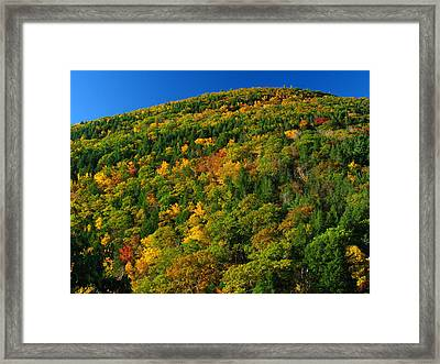 Fall Foliage Photography Framed Print by Juergen Roth
