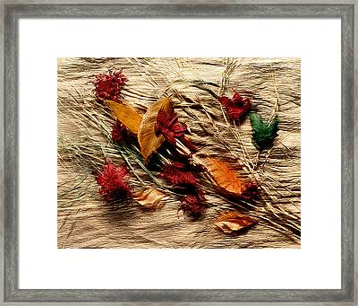 Fall Foliage Still Life Framed Print