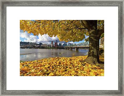 Fall Foliage With Portland Oregon City Framed Print