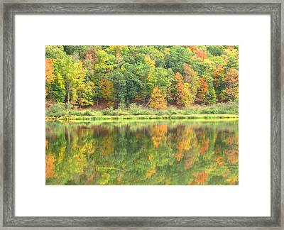 Fall Forest Reflection Framed Print by Joshua Bales