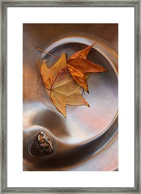 Fall Fountain Framed Print