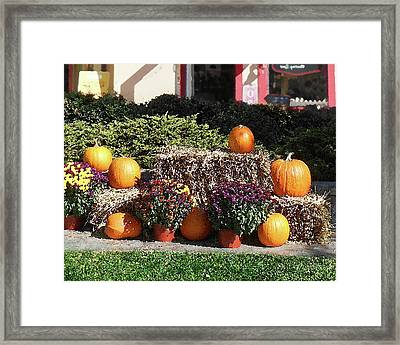 Framed Print featuring the photograph Fall Gifts Harvest Time by Irina Sztukowski