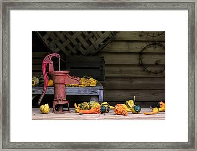 Fall Gourds Framed Print