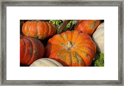 Fall Harvest Framed Print by Stephen Stookey