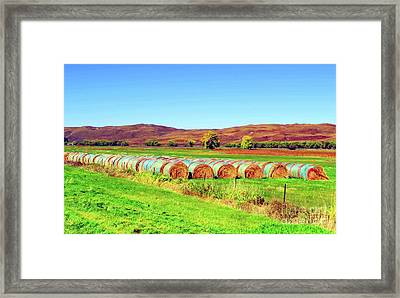 Fall Hayfield Framed Print by Desiree Paquette