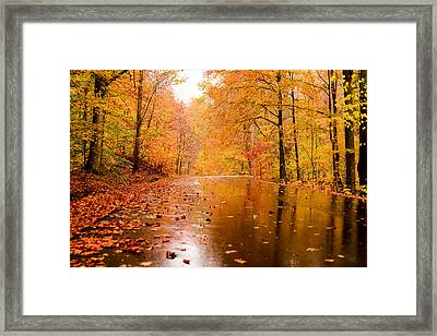 Fall Holidays Framed Print by Mary Timman