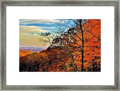 Fall Horizon Framed Print