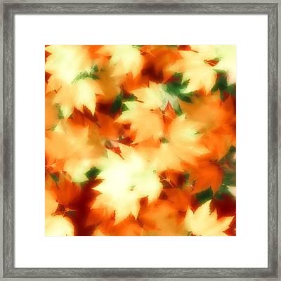 Fall II Framed Print