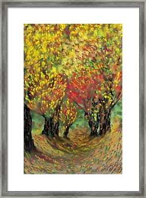 Fall Impression Framed Print by Harry Dusenberg