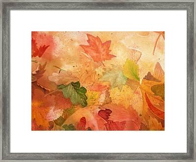 Fall Impressions Iv Framed Print
