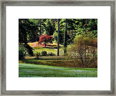 Fall In Alabama Framed Print by Judy Vincent