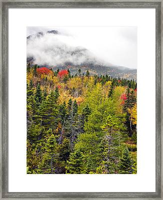 Fall In Baxter State Park Maine Framed Print by Brendan Reals