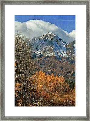 Fall In British Columbia Framed Print by Marty Koch