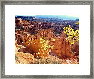 Fall In Bryce Canyon Framed Print by Marty Koch