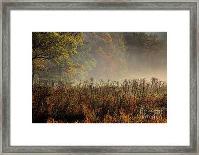 Framed Print featuring the photograph Fall In Cades Cove by Douglas Stucky