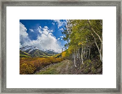 Framed Print featuring the photograph Fall In Colorado by Wesley Aston