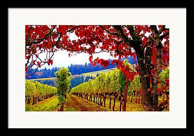 Oregon Wine Country Framed Prints