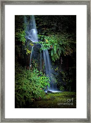 Fall In Eden Framed Print by Carlos Caetano