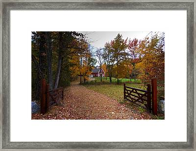Fall In Hollis Framed Print