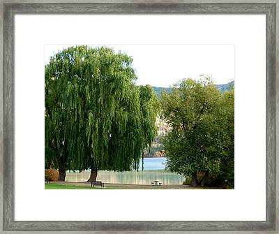 Fall In Kaloya Park 6 Framed Print