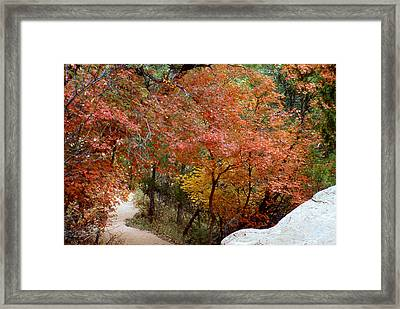 Fall In Mammoth Framed Print