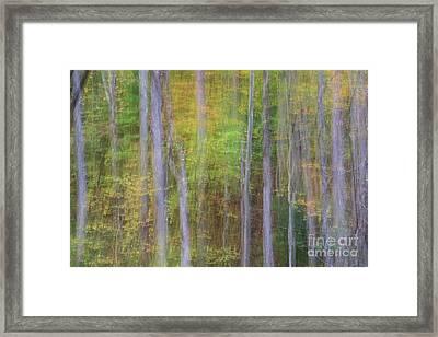 Fall In Motion Framed Print by Jennifer Ludlum