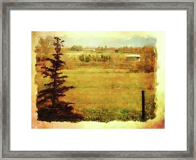 Fall In My Backyard Framed Print
