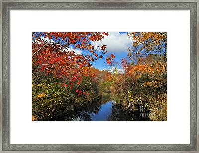 Fall In New England 2 Framed Print