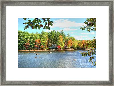 Fall In New England Framed Print