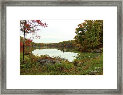 Fall In New York Framed Print