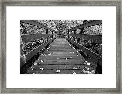 Framed Print featuring the photograph Fall In Oregon Bw by Jonathan Davison