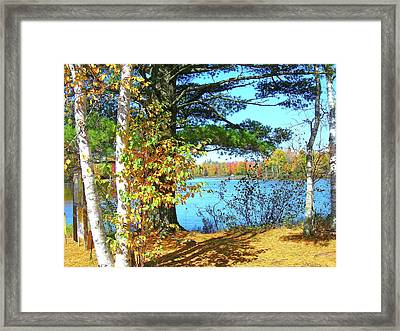 Fall In Phillips Wi Framed Print by Randy Rosenberger