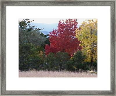 Fall In Santa Fe Framed Print by Brian  Commerford