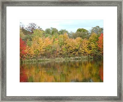 Fall In South Jersey Framed Print by D R TeesT